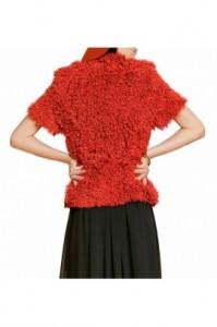kailinis-svarkas-su-dirzu-paltai